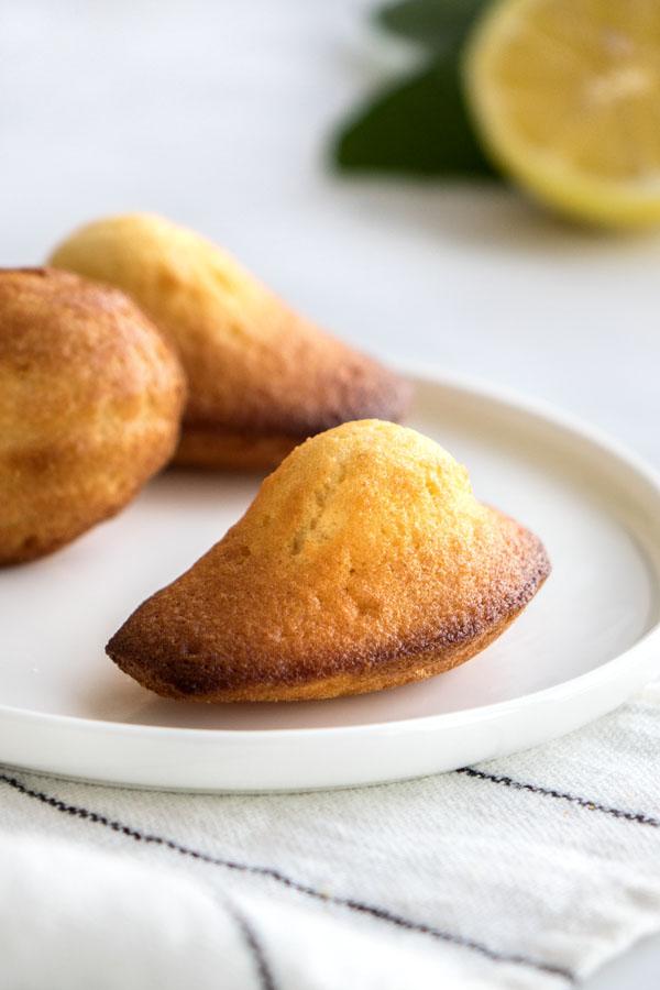 La recette des madeleines au citron