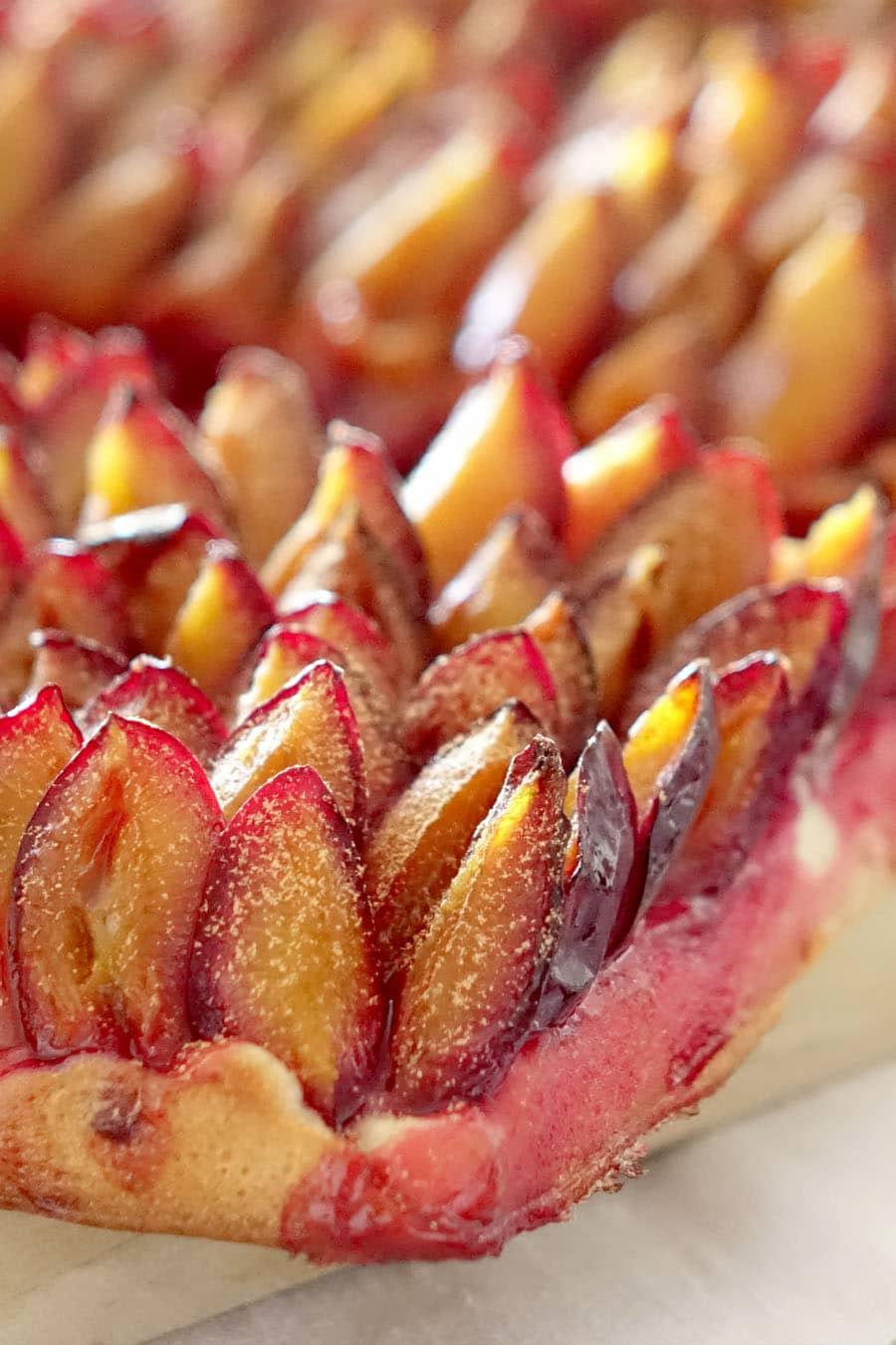 Recette de la tarte alsacienne aux quetsches