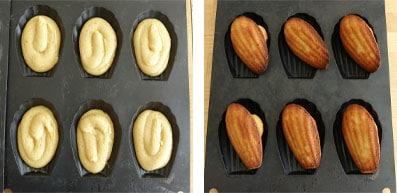 La recette des Madeleines au rooibos